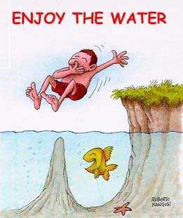 Enjoy the water!