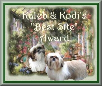 Kodi & Kaleb's Doghouse - The previous URL is no more valid!