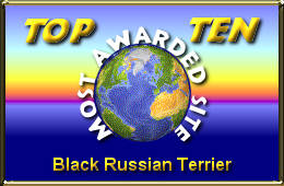 Black Russian Terrier Finland